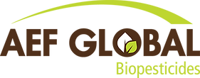 AEF Global Logo.png