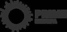 Prime Med Spa Portland Logo