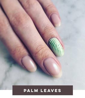 Palm Leaves_webshop.JPG