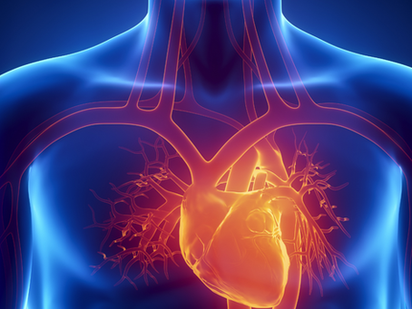 Keto Diet And Heart Health