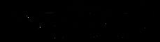 WX_Logo_Transparent_Background copy.png