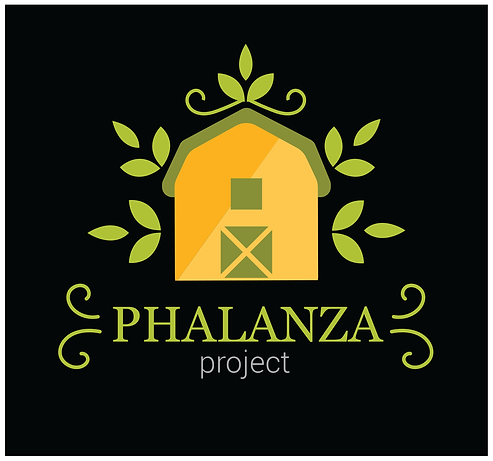LOGO PHALANZA Project