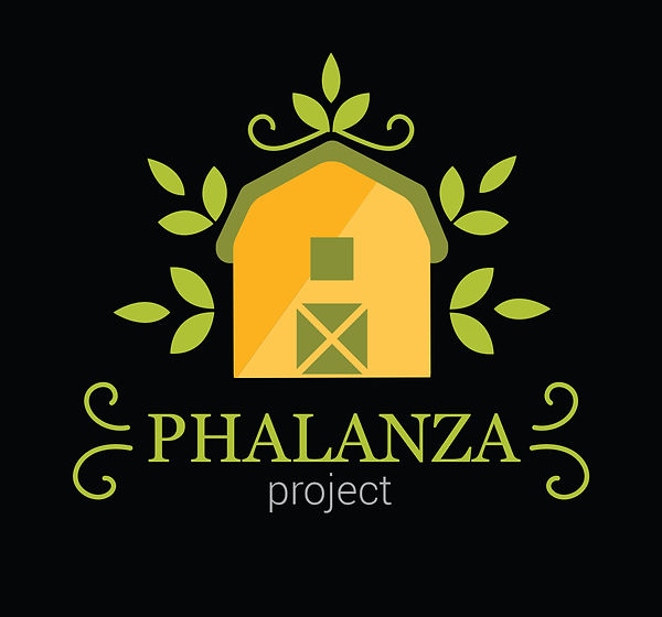 PHALANZA Project