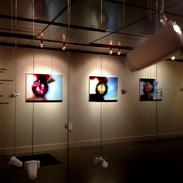 Exposição realizada em 2011 no Museu de Arte Helenton Barbosa, Maringá-Pr.