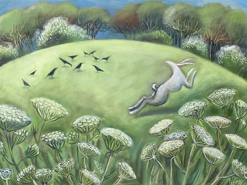 White Hare and Cow Parsley