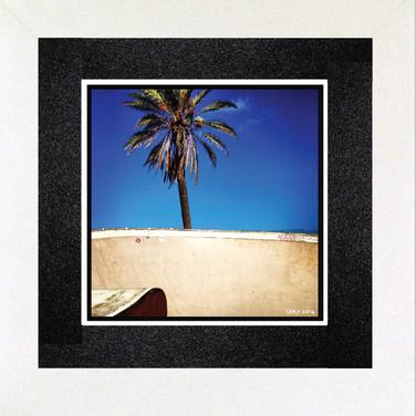 Mar Palm