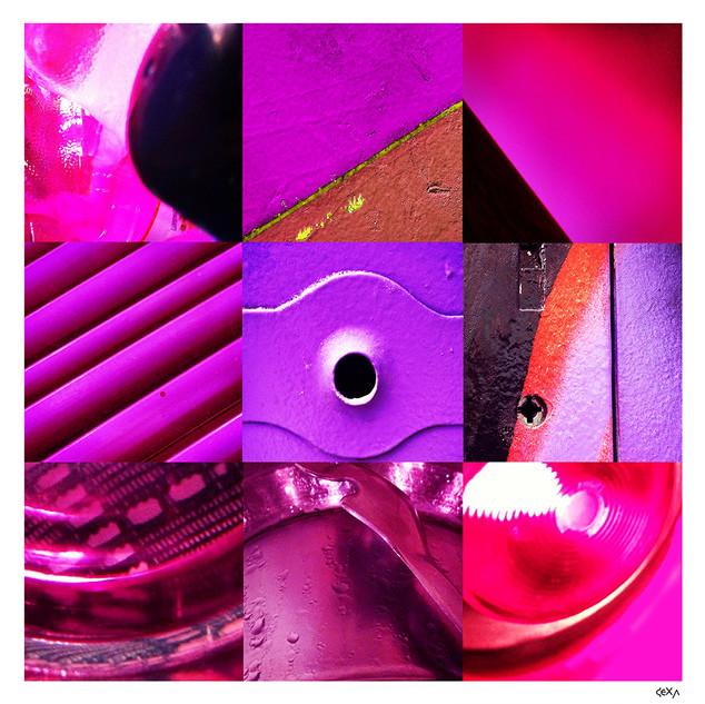 8-Violeta.jpg
