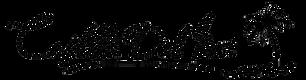 castillo logo.png