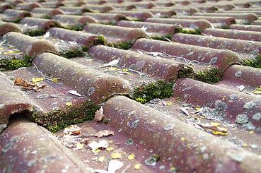 roof terracotta 2.jpg