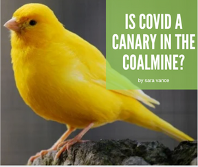 Is COVID a Canary in the Coalmine for Our Health?