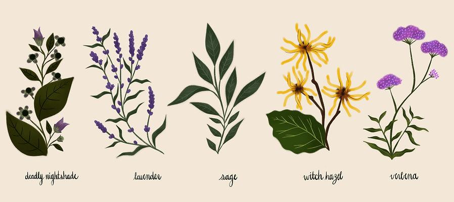 Magical Botanicals