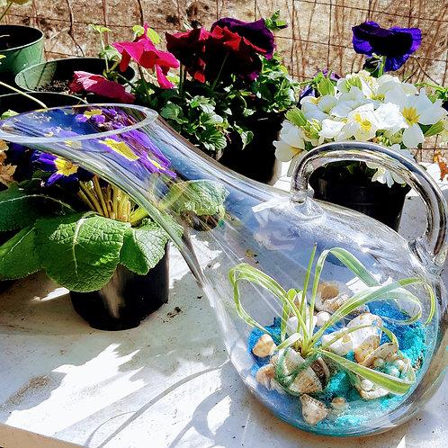 Pour Nature spider terrarium