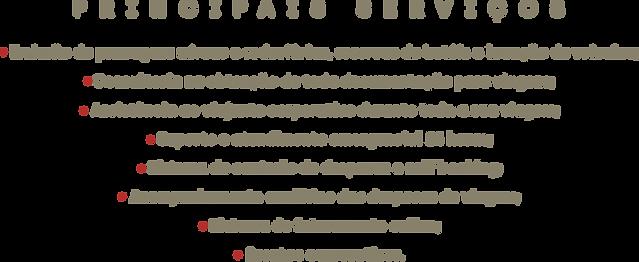 Principais Serviços.png