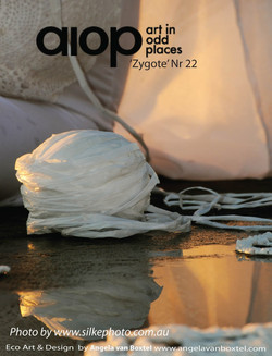 angela_van_boxtel_art_in_odd_places6pdf