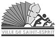 aecp 972 saint esprit