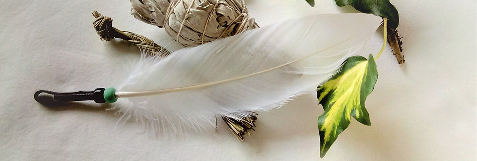 Smudging Set with 'Standing Bear' White Feather