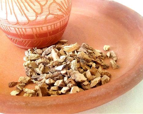 bitter root herb