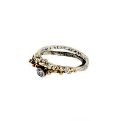 gimb rings complet 1.JPG