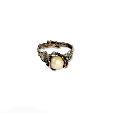 gimb Neven 5 - perla.JPG
