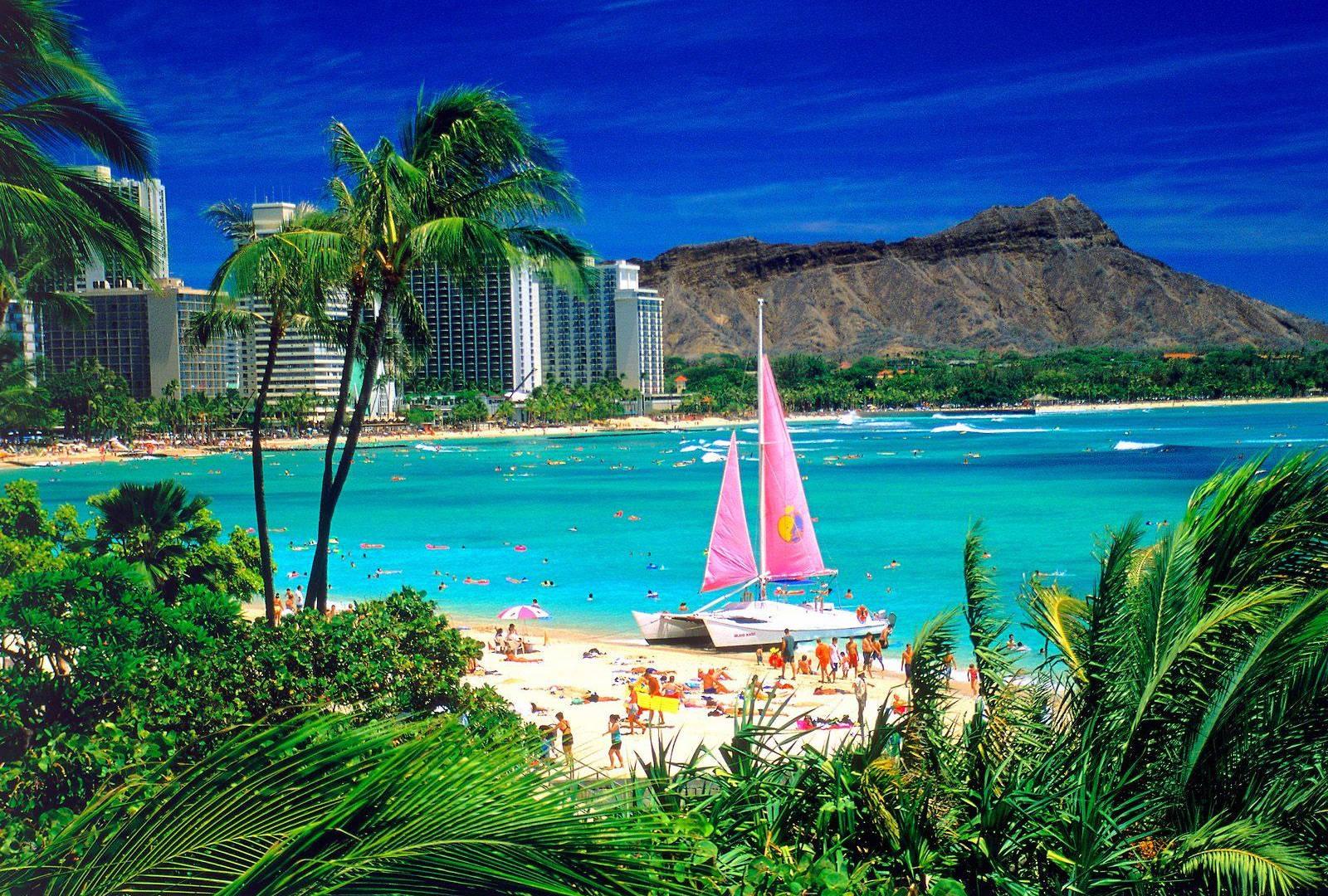 Waikiki beach picture.jpg