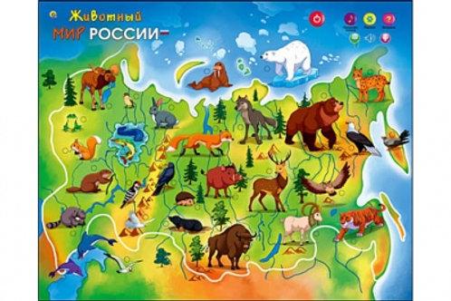 03-351-2 ЗВУКОВОЙ ПЛАКАТ ЖИВОТНЫЙ МИР РОССИИ(РК)