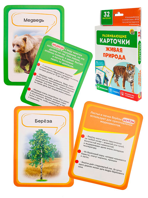 03-568 Развивающие карточки: Живая природа