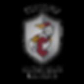 CHS Academy Entire School Logo.png