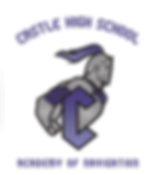 CHS Academy Logos - Navigation VP.png