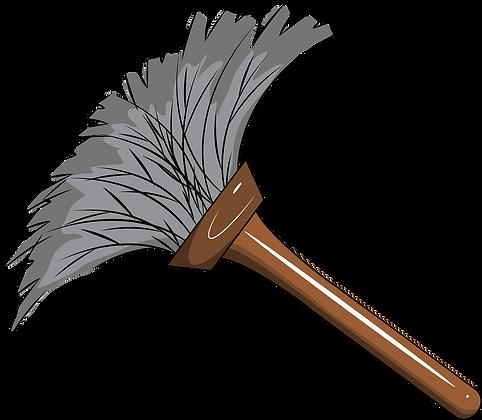 Nettoyage, dépoussiérage