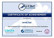 SCE Certificate[10514]-page-001.jpg