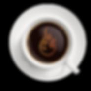 FD - temp logo.png