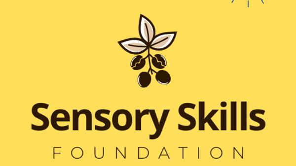 Sensory Skills Foundation_ONLINE