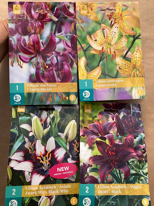 Liljer - Martagon-liljer