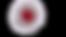 citoplasma-cellula-procariote-cellula-um