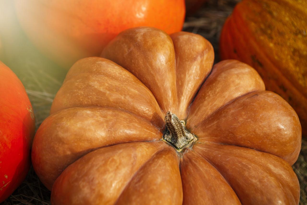 IMG_1180_Food_Pumpkin_01_1280