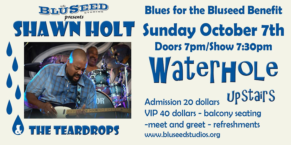 Shawn Holt and The Teardrops: Blues for the Bluseed Benefit