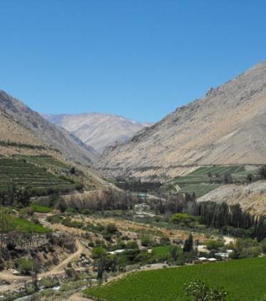 PRANA Fruit es Valle del Elqui