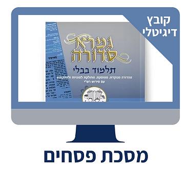 מסכת פסחים - פרק שמיני - קובץ דיגיטלי
