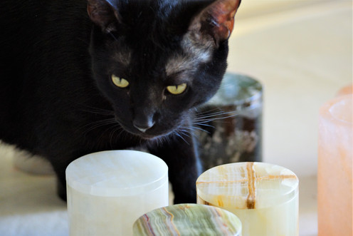 Onyx Candle Assortment with Model.jpg