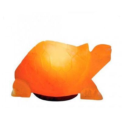 Turtle Salt Lamp.jpg