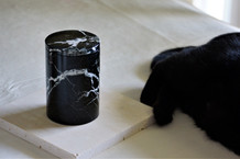 Zebra Black Marble Candle with Model 2.j