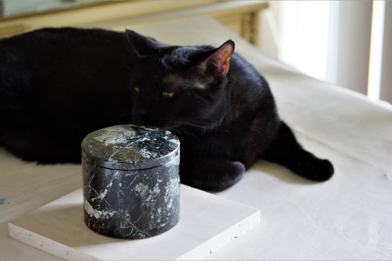 Zebra Black Marble Candle with Model.jpg