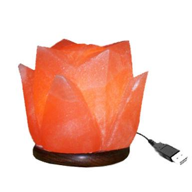 flower-shape-usb-salt-lamp.jpg