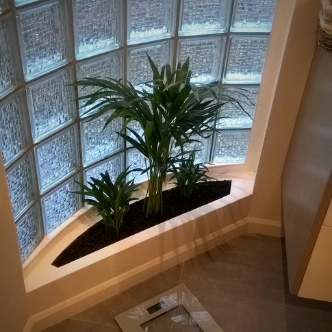 planten in badkamer