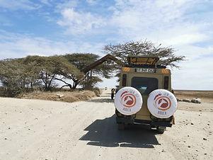 Jeep Tansania Safari