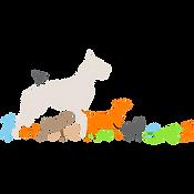 Suite des animaux - SACPA Clara ROAAR