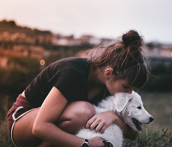 affection-canine-dog-2850609.jpg