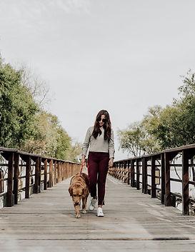 animal-lover-brunette-dock-2219928.jpg