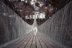 animal-architecture-bridge-326957.jpg