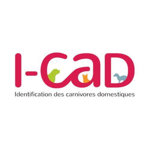 Logo - i-cad